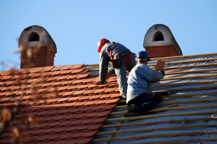 The Beginner's Guide to Roofers